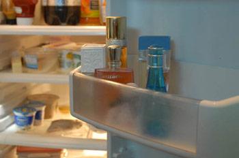 100630_fragrance_fridge