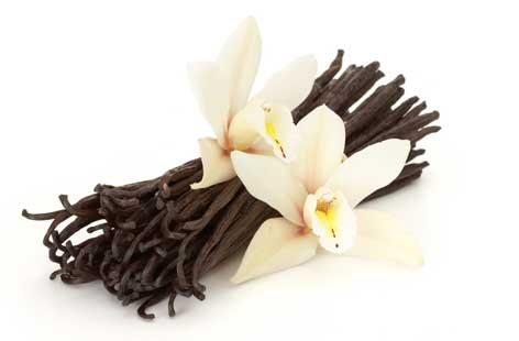 Vanilla-scented-apricots-hero-9ecae04b-da87-4faa-a77e-6e92e9be7ba5-0-472x310