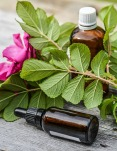 essential-oils-2535215_960_720 kopia