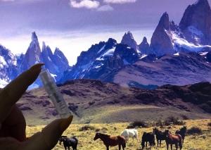 Ambar de los Andes, Fueguia 1833, sample
